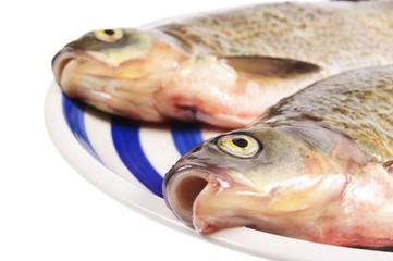 two dead fishes on plate isolated on white