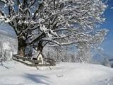 Winterliche Idylle poster
