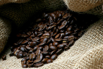 beans of coffee in bag