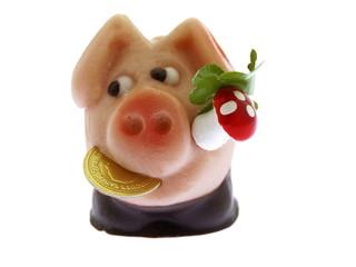 glücks schwein mit kleeblatt und penny