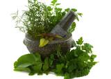 Healing herbs in a granite mortar and pestle poster
