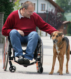 Man in a wheelchair with a dog poster
