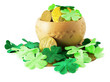 Saint patrick's pot filled with gold and shamrock around it