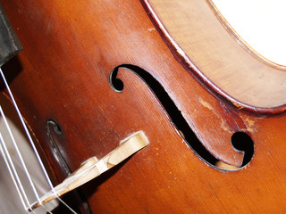The part of old violoncello body