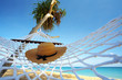 hat and hammock