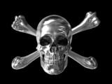 poison or toxic symbol chrome skull 3d poster