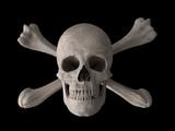 poison or toxic symbol horizontal poster