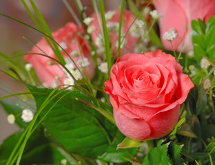 Bouquet of roses. A composition from gentle pink roses