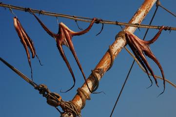 asciugatura delle reti da pesca nel porticciolo