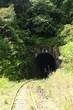Leinwanddruck Bild - tunnel sous vegetation verdoyante, ligne fce, madagascar