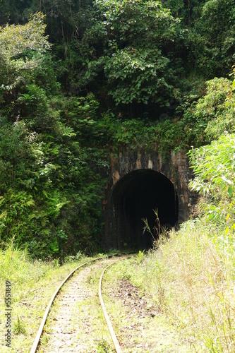 Leinwanddruck Bild tunnel sous vegetation verdoyante, ligne fce, madagascar