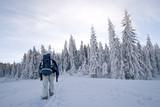 Winter trekking poster