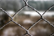 winter wire fence #3