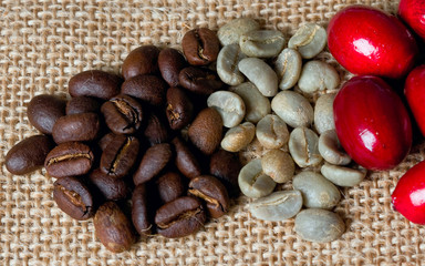 cafes variedades