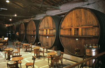 A wine tasting room with huge barrels in Mendoza