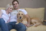 Young couple with their pet Golden retriever poster