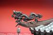 Detaily fotografie Ušlechtilé střecha používá drak nalákat v prosperitě do chrámu