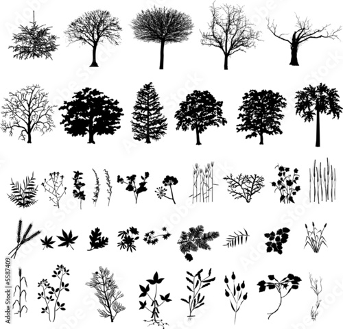Trees, plants and flower, black silhouette