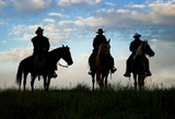 Cowboys on horseback at first light. Silhouettes
