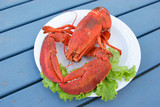 A freshly cooked Atlantic lobster on a dinner plate. poster