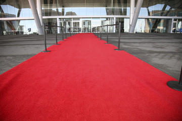 Red Carpet entrance for a celelbrity welcome