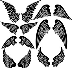 Seven Sets of Angel Wings