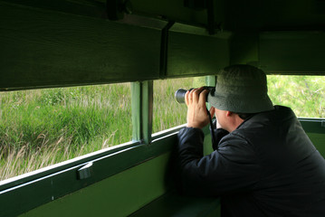 Man looking through binoculars in a birdwatching hideout