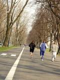 Three men jogging along asphalt alley poster