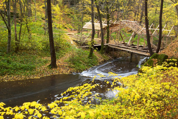 An image of a footbridge in autumn forest