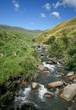 Stream near Kamberg in the Drakensberg mountains