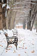 Bench in the park in winter