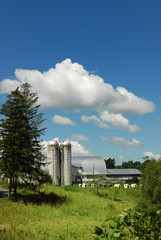 silos under a cloudy sky with foreground greenery