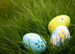 Painted Colorful Easter Eggs in Grass - 5664876