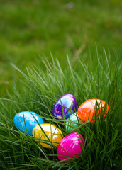 Plastic Colorful Easter Eggs in Grass