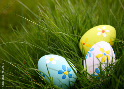 Foto op Plexiglas Egg Painted Colorful Easter Eggs in Grass