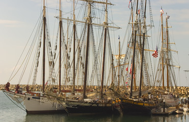 Three Tall Ships in Dana Point all docked together.