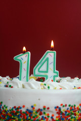 Birthday Cake - Fourteen