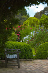 Old wooden bench in the shadow of tree in the lush flower garden