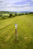 View from the offas dyke long distance footpath hergest ridge  poster