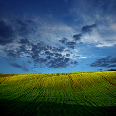 Landscape with green fields and dark blue the sky
