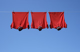 Laundry, three red t-shirts on a clothes-line. poster