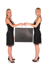 Twin girls holding bag