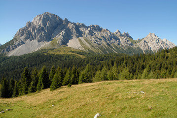 Alpine Panorama