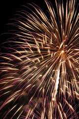 Colorful fireworks in gold and purple