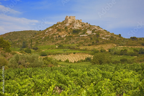roussillon : chateau cathare d'aguilar Poster