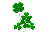 clover four leafs, luck and fortune poster
