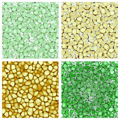 biology cellulate texture backgrounds set (CG)