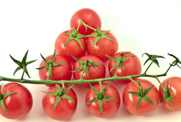 Red fresh tomatos branch stand on a white background