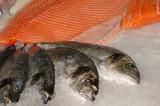 bream & salmon on fishmonger slab poster