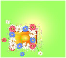 fiori e bolle